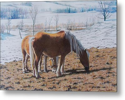 Two Ponies In The Snow Metal Print