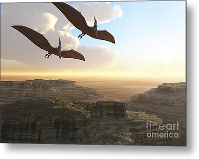 Two Pterodactyl Flying Dinosaurs Soar Metal Print by Corey Ford