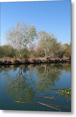 Metal Print featuring the photograph Two Reflected by Laurel Powell