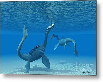 Two Sea Dragons Metal Print by Corey Ford