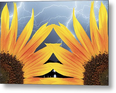 Two Sunflower Lightning Storm Metal Print