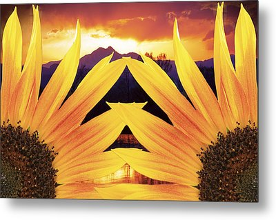 Two Sunflower Sunset Metal Print