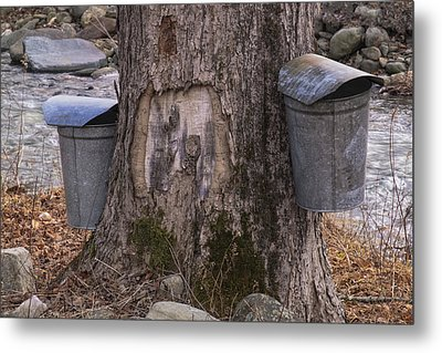 Two Syrup Buckets Metal Print