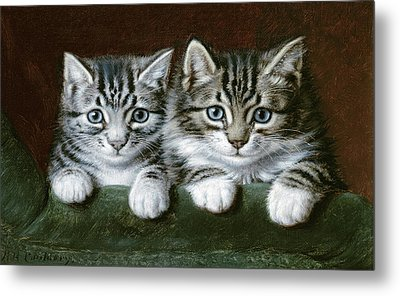 Two Tabby Kittens  Metal Print by Horatio Henry Couldery