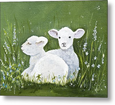 Two Wee Sheep Metal Print by Virginia McLaren