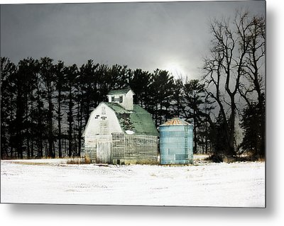 Metal Print featuring the photograph Twos Company by Julie Hamilton