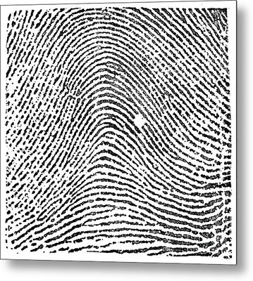 Typical Arch Pattern, 1900 Metal Print by Science Source