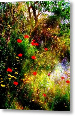 Umbrian Wild Flowers 3 Metal Print