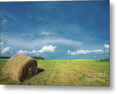 Under Prairie Skies Metal Print