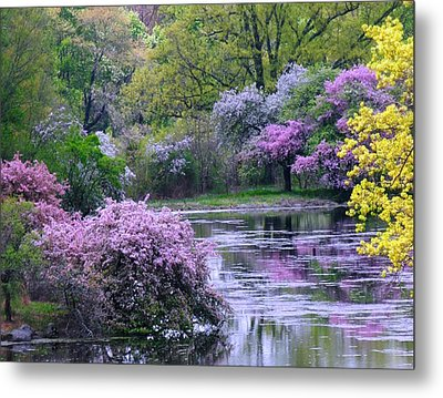 Under Spring's Spell Metal Print by Living Color Photography Lorraine Lynch