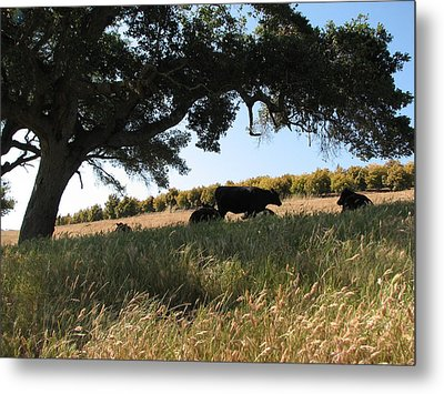 Under The Oak Tree Metal Print
