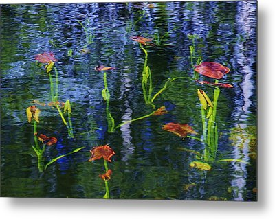 Metal Print featuring the photograph Underwater Lilies by Sean Sarsfield