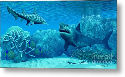 Underwater World Metal Print by Corey Ford