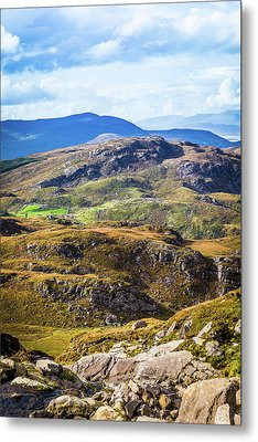 Undulating Green, Purple And Yellow Rocky Landscape In  Ireland Metal Print by Semmick Photo