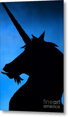 Metal Print featuring the photograph Unicorn by Craig B