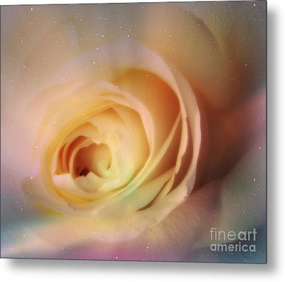 Metal Print featuring the photograph Universal Rose by Kristine Nora