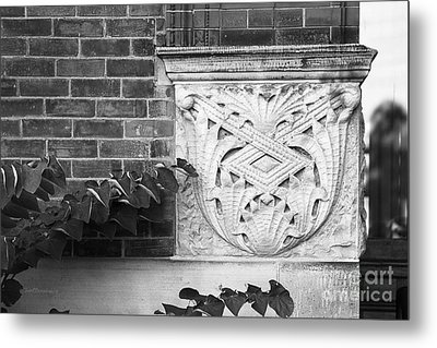 University Of Michigan Organic Detail Metal Print