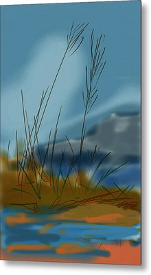 untitled 1 Nature Metal Print by Denny Casto