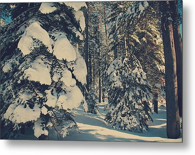 Untouched Metal Print by Laurie Search