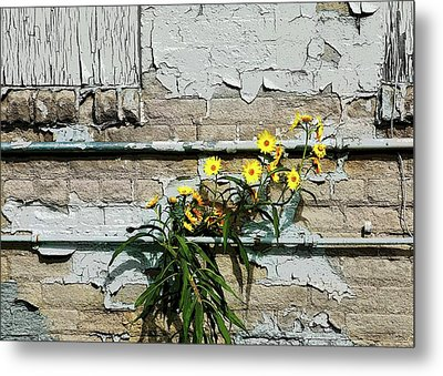 Metal Print featuring the digital art Up Against The Wall by Ellen Barron O'Reilly