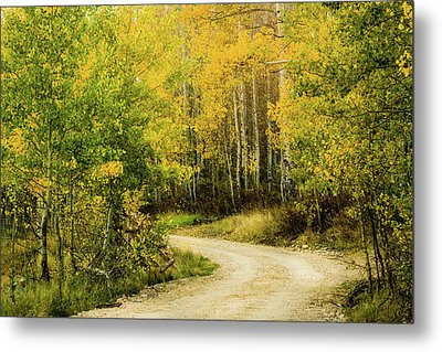 Up Around The Bend Metal Print by TL Mair
