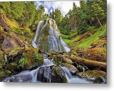 Upper Tier Of Falls Creek Falls In Summer Metal Print by David Gn