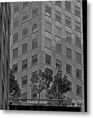 Urban Living In San Francisco - A Garden In The City Metal Print by Mark Hendrickson