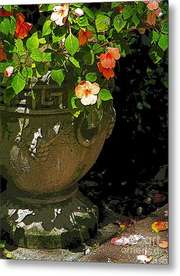 Urn Of Impatience Metal Print by Deborah Johnson