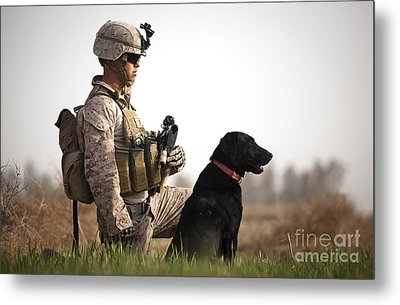 U.s. Marine Holds Security In A Field Metal Print by Stocktrek Images