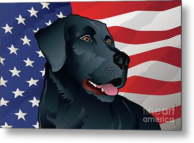 Usa Black Lab Metal Print
