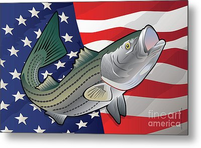 Usa Rockfish Striped Bass Metal Print