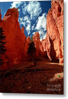 Utah - Bryce Canyon Metal Print by Terry Elniski