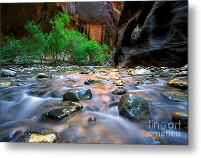 Utah - Virgin River 5 Metal Print by Terry Elniski