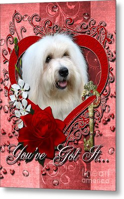 Valentines - Key To My Heart Coton De Tulear Metal Print by Renae Laughner