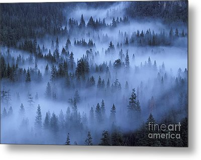 Metal Print featuring the photograph Valley In Fog by Stan and Anne Foster