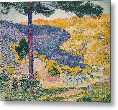 Valley With Fir  Shade On The Mountain, 1909  Metal Print by Henri Edmond Cross