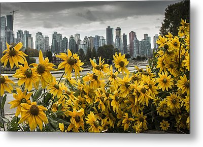 Vancouver Metal Print by Robin Williams