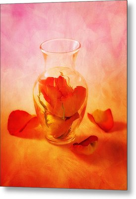 Vase Of Roses Still Life Metal Print by Tom Mc Nemar