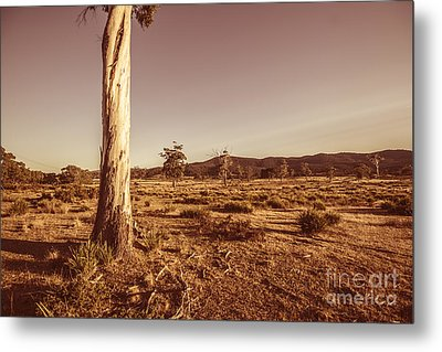 Vast Pastoral Australian Countryside  Metal Print by Jorgo Photography - Wall Art Gallery