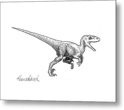Velociraptor - Dinosaur Black And White Ink Drawing Metal Print by Karen Whitworth