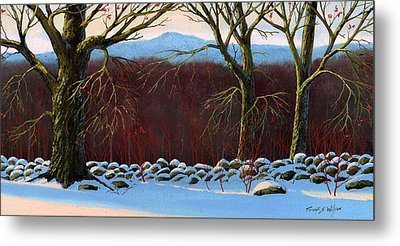 Vermont Stone Wall Metal Print by Frank Wilson