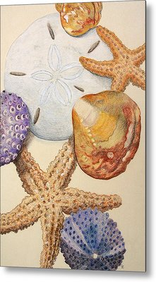 Vertical Starfish Metal Print by Glenda Zuckerman
