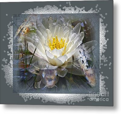 Very Koi Metal Print by Chuck Brittenham