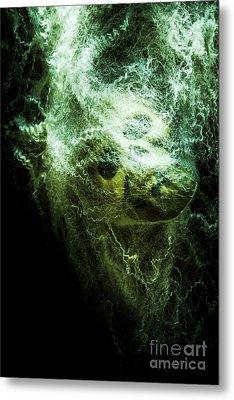 Victim Of Prey Metal Print by Jorgo Photography - Wall Art Gallery