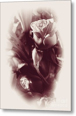 Victorian Romances Metal Print by Jorgo Photography - Wall Art Gallery
