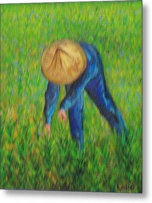 Vietnamese Rice Planter  Metal Print by Lore Rossi