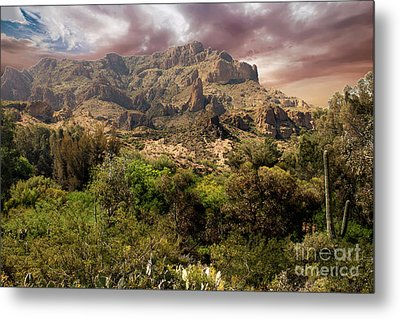 View From Boyce Thompson Metal Print by Anne Rodkin