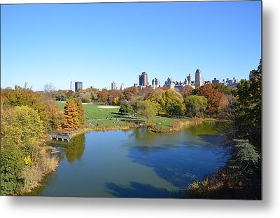 View From Central Park Ny Metal Print by Trish Tritz