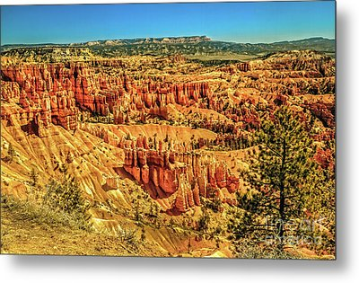 View From Sunset Point Metal Print by Robert Bales