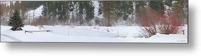 View From The Cabin Metal Print by Melisa Meyers